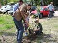 planten van een nieuwe boom door zoon van herder