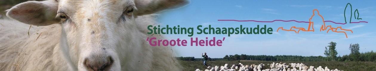 Schaapskudde Groote Heide